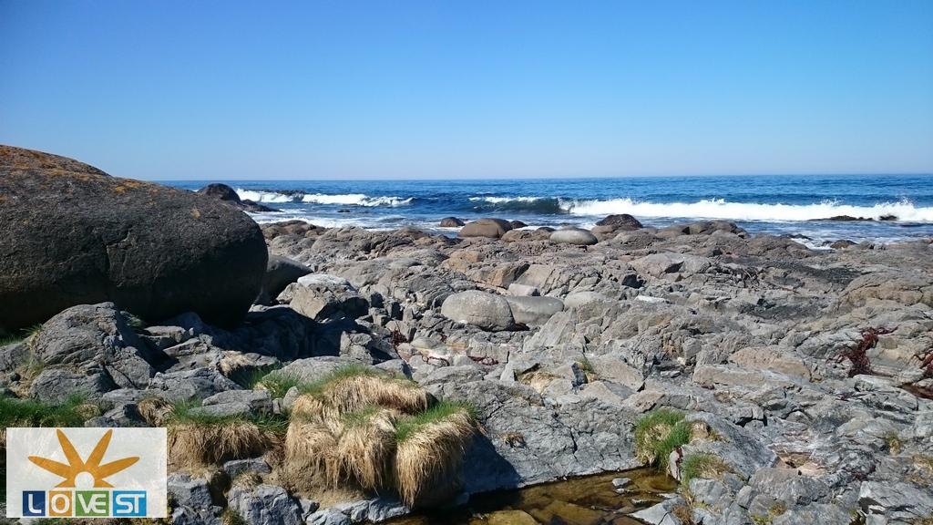 Bølger mot stein(Bilde)